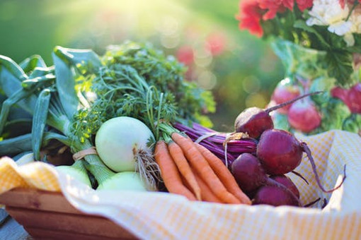 Top Immunity Boosting Winter Foods