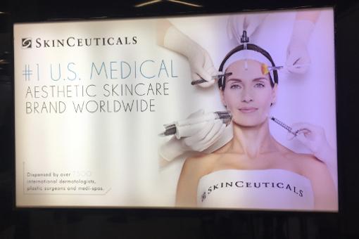 Bespoke SkinCeuticals Facial