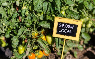 Sustainable Restaurants Around Australia on OpenTable