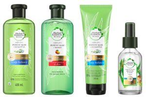 Herbal Essences bio:renew Potent Aloe Collection Beauty Over 40