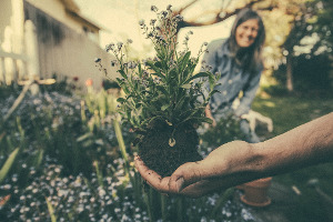 7 tips to relax and reduce stress Gardening Beauty Over 40