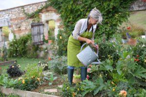 Gardening goodluz shutterstock Beauty Over 40