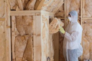 Home Insulation ESB Professional Shutterstock Beauty Over 40